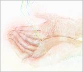hand  手