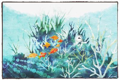 swimmy_20090131121543.jpg